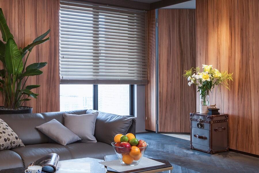 blinds image1