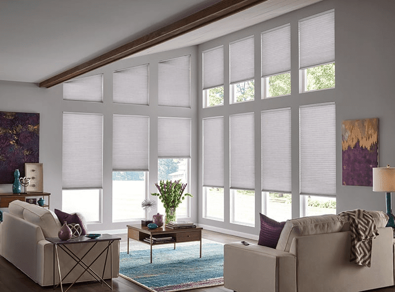 Comfortex Blinds on 2 Walls in Living Room