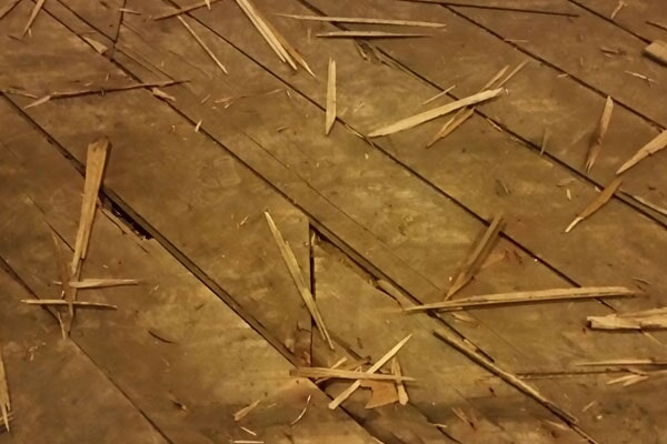 Flooring from Roman Floors & Remodeling in Dearborn, MI