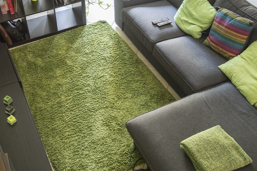 The the Bay Area area's best area rug store is Carpeteria
