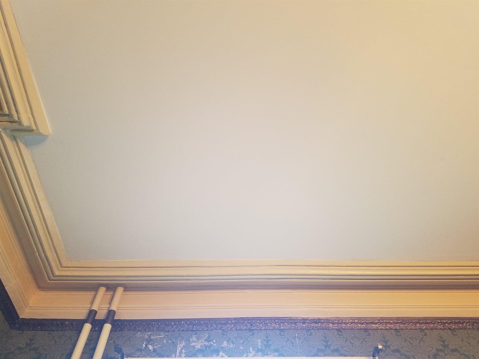 Plaster Crown Repair in old Victorian House