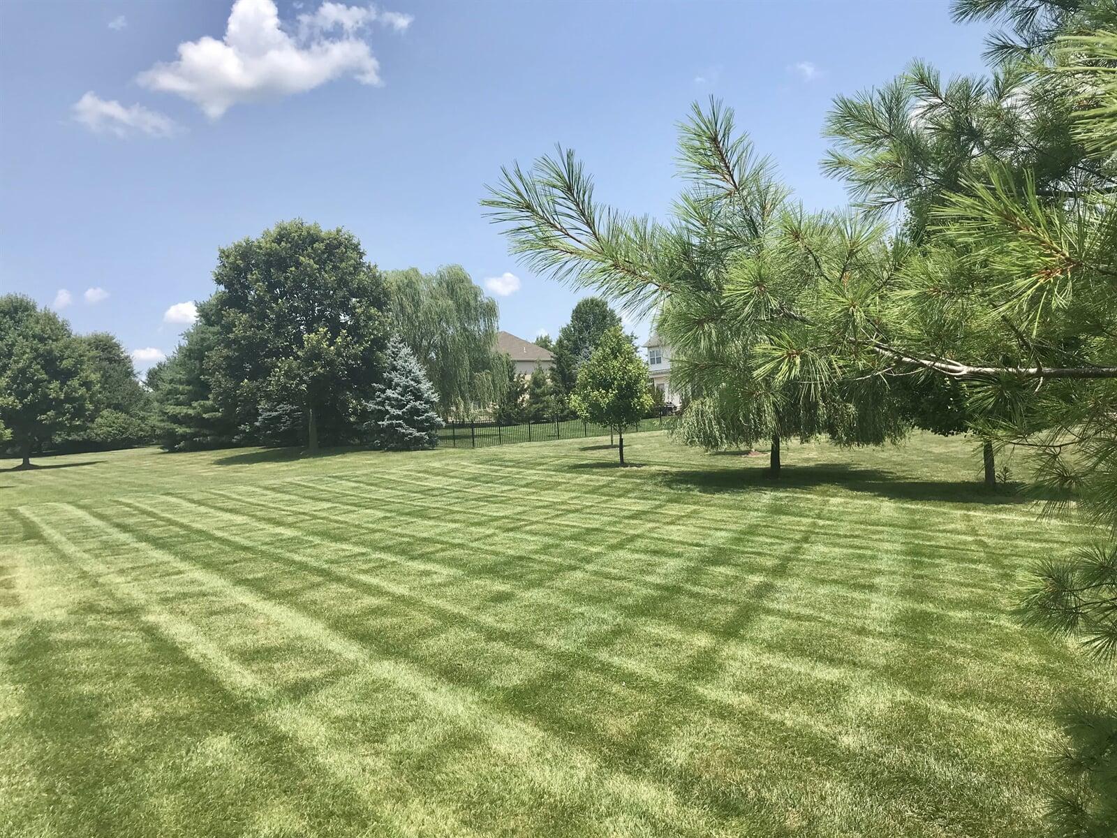 Criss Cross pattern in lawn