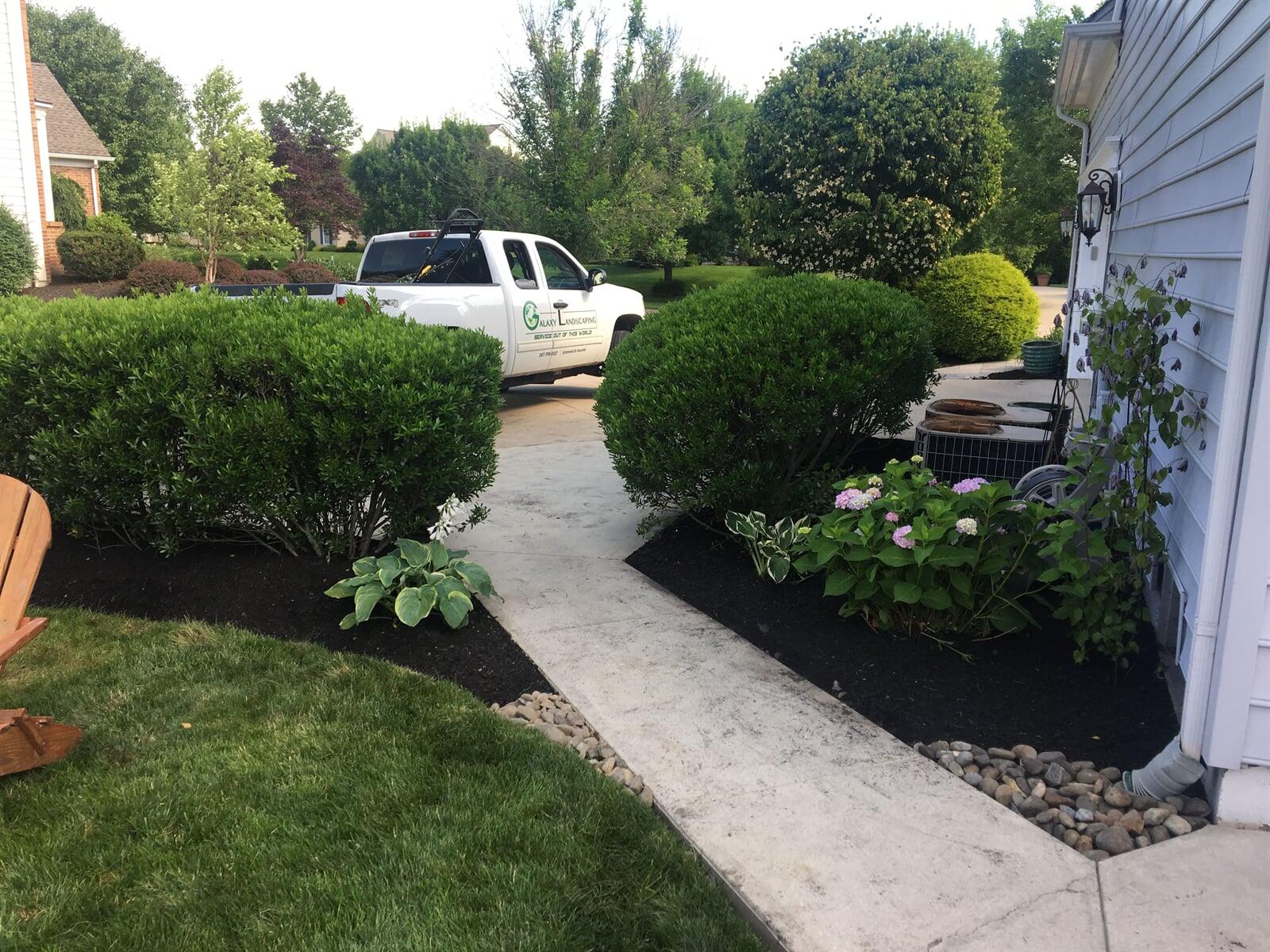 Fresh mulched garden bed