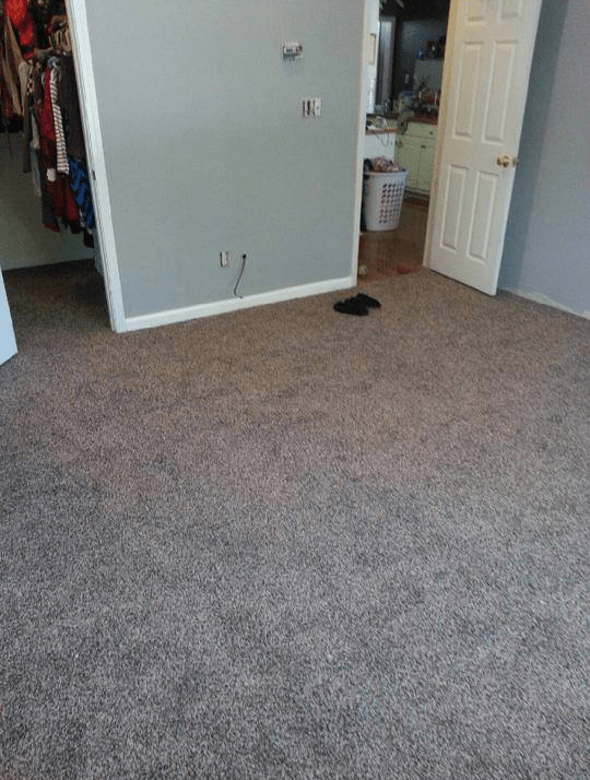 New carpet installation in Watkinsville, GA from Carpets Unlimited