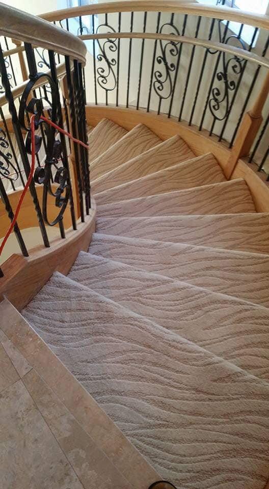 2019-07-24 19.57.30-Carpet