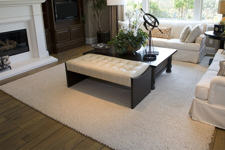 Indoor/outdoor area rugs in McFarland, WI from Bisbee's Flooring Center