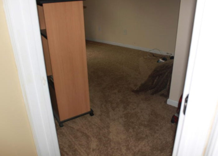 closet carpet bedroom sample