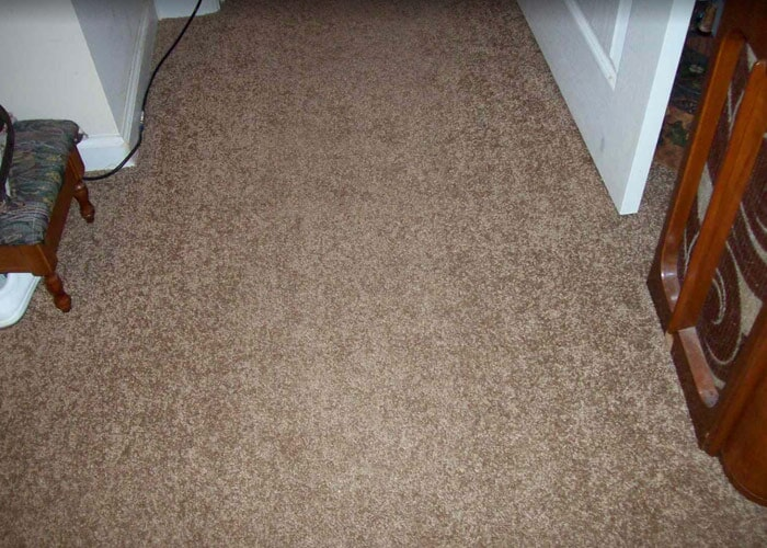 Home carpet sample