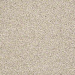 Shop Carpet in Sterling VA from FLOORware