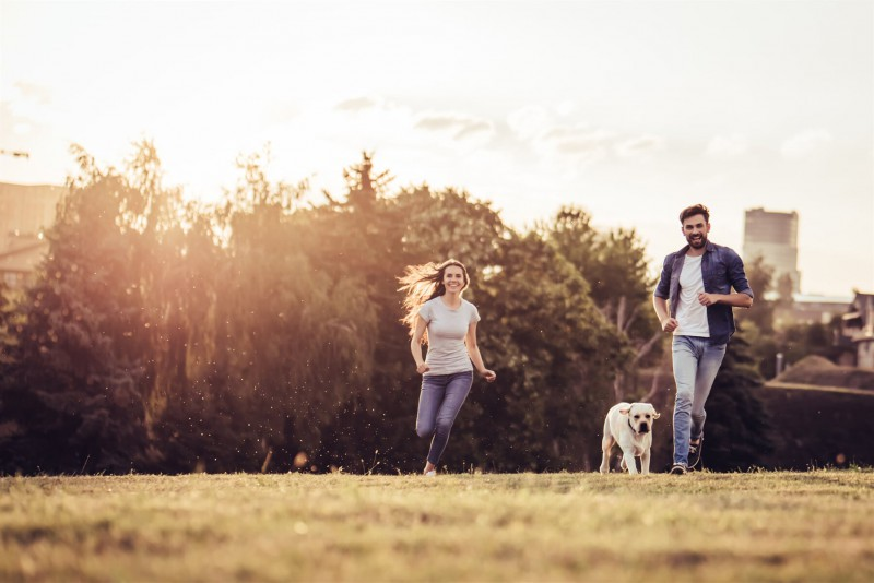 A couple running with their dog in a park