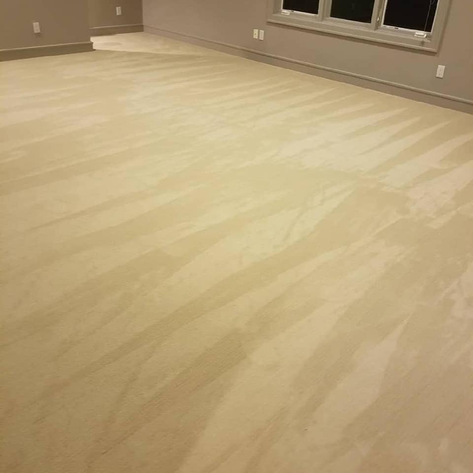 Soft new carpet in Pearland, TX from Petra Flooring & Blinds
