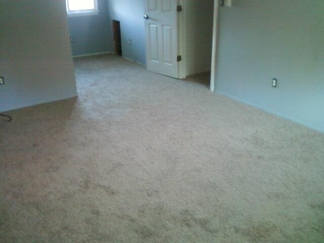 Carpet flooring installation in Trenton, MI from Floorz by Bill