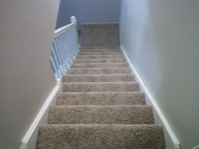 Carpeted stairs in Trenton, MI from Floorz by Bill