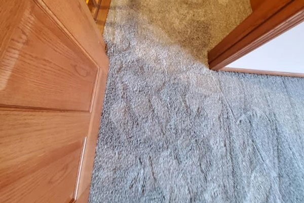 Carpet from Affordable Flooring in Kankakee, IL