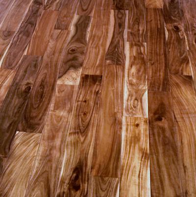 Acacia - Detail