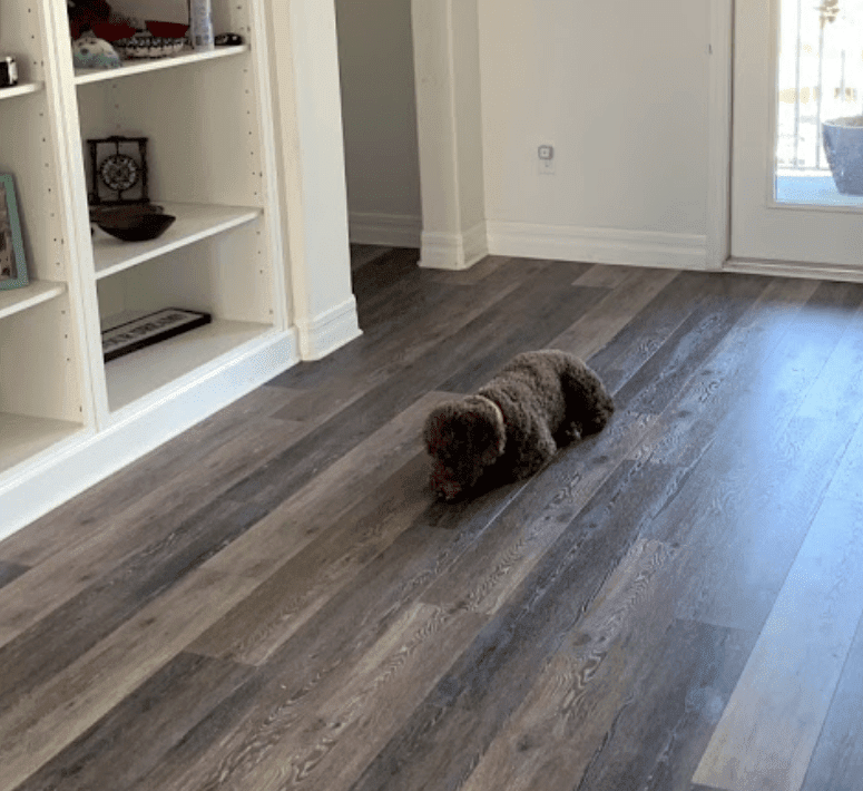 Pet friendly flooring in Riverview, FL from Brandon Tile & Carpet