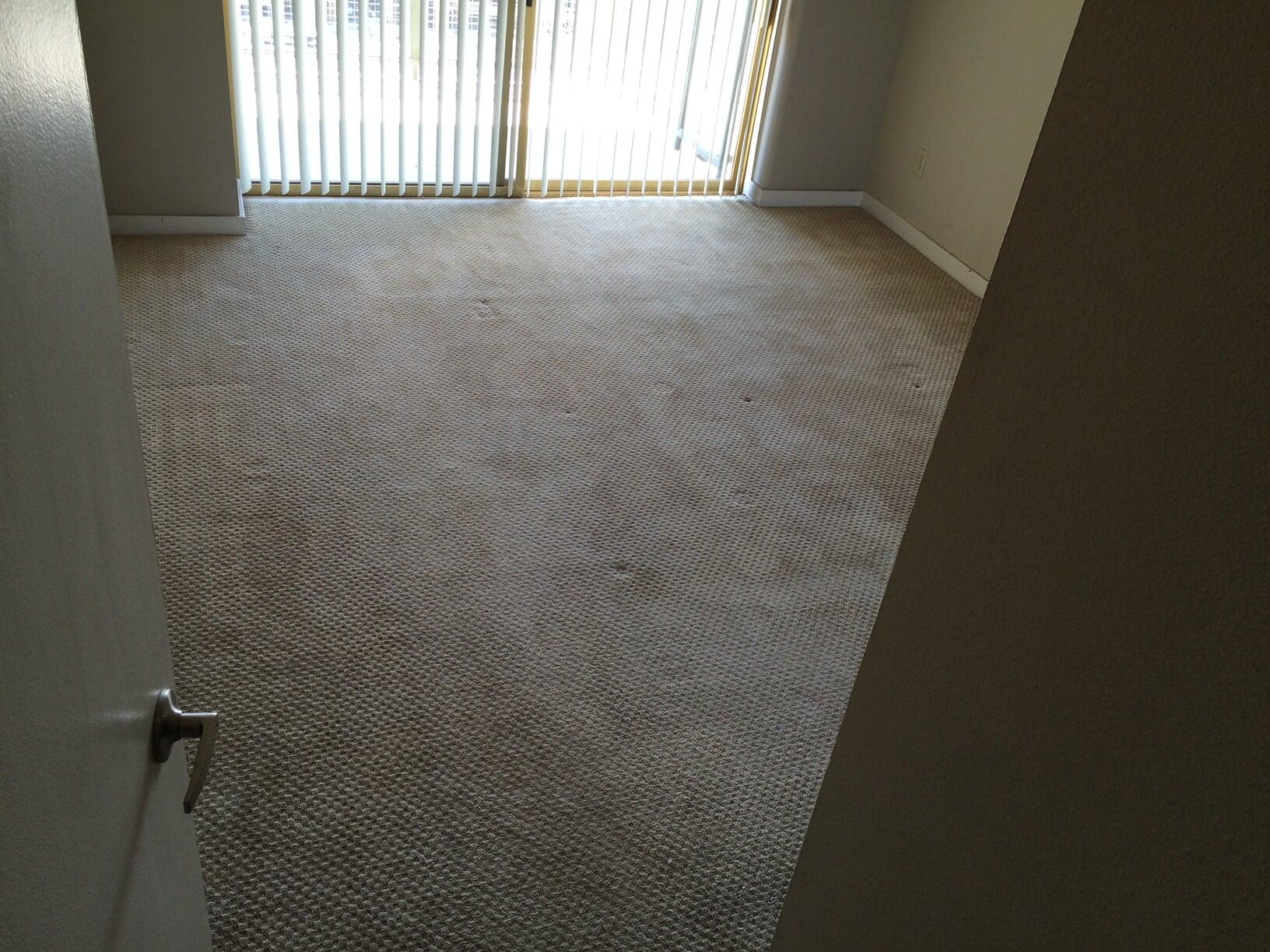 Soft new carpet flooring in Scottsdale, AZ from Cornerstone Flooring Brokers