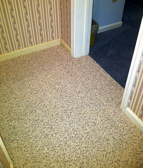 Multi color carpet flooring in Plymouth, NH from ADF Flooring LLC