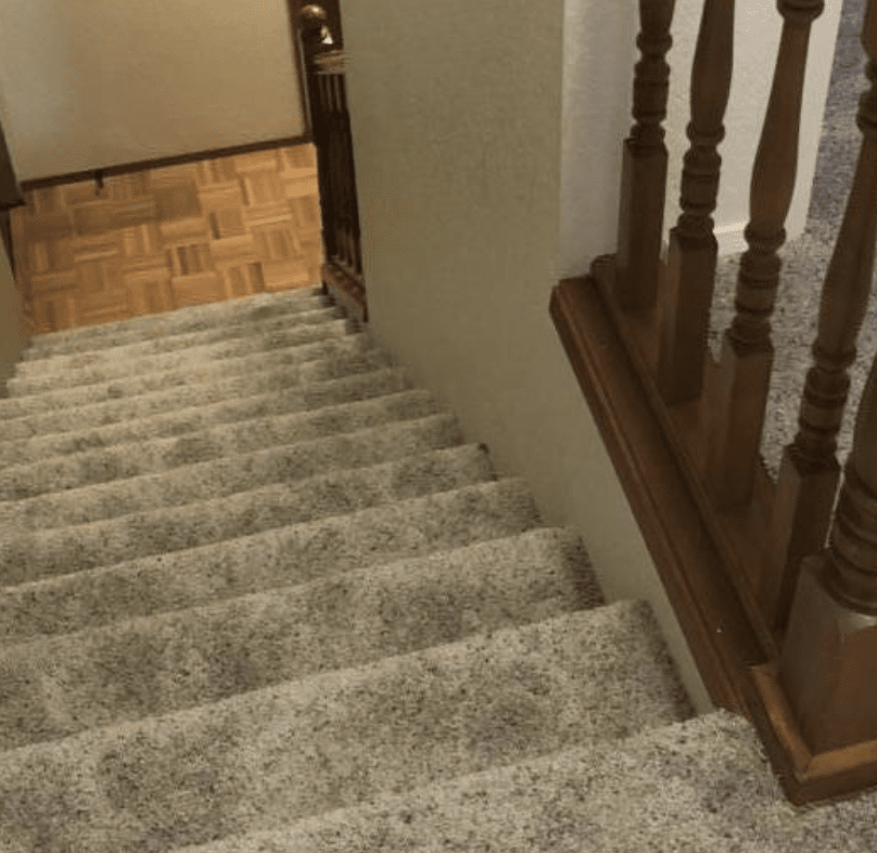 Carpet stairs from Olympia Floor Source in Lacey, WA