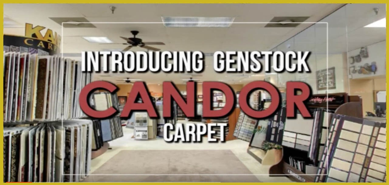 Introducing Genstock Candor carpet from General Floor in Bethlehem, PA