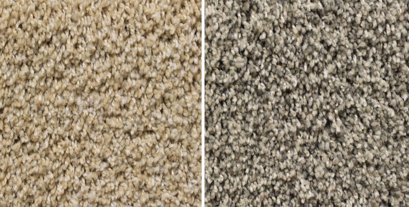 Genstock Thrive carpet from General Floor in Bellmawr, NJ