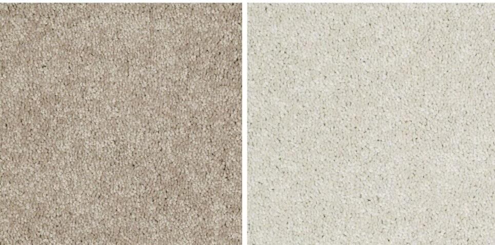 Genstock Jaguar IV carpet from General Floor in Holmes, PA