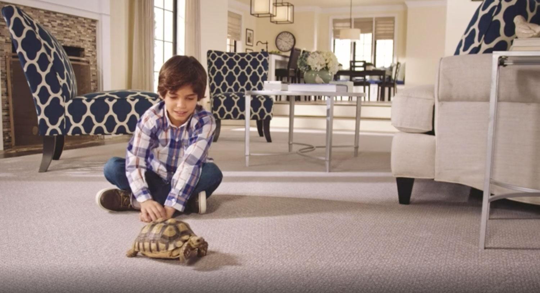 SmartStrand Carpet in Hamilton ON
