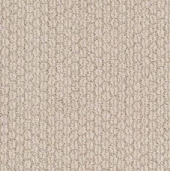 Artistry Pastoral Carpet in Baked Beige at General Floor