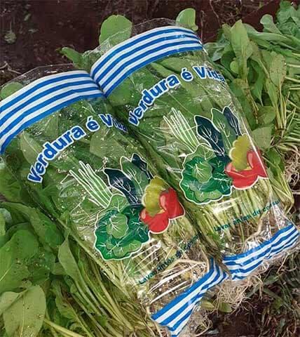 Embalagem para Verduras