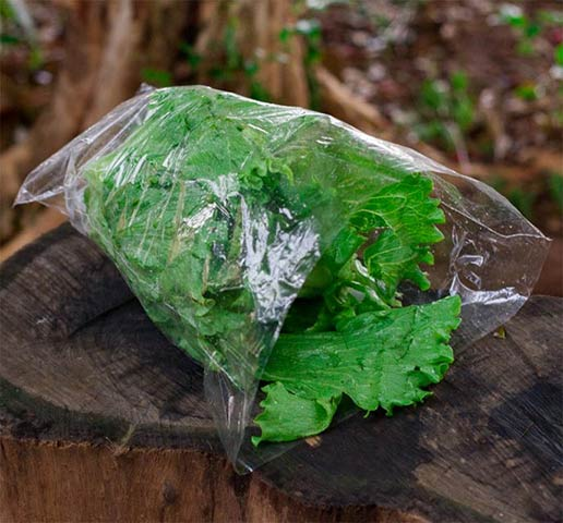 Embalagens lisas para verduras