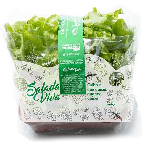 Embalagens com Flexografia para verduras