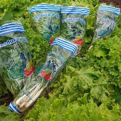 Embalagens genéricas para verduras