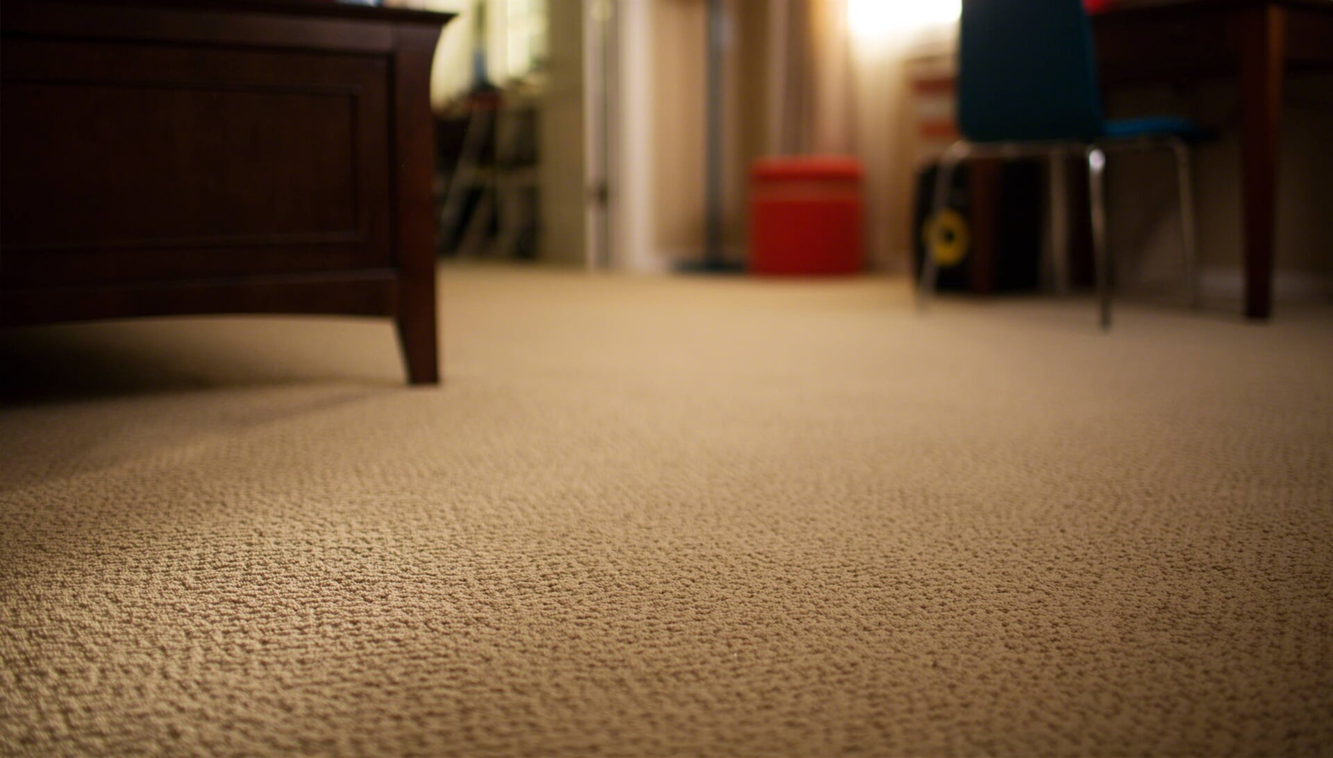 Carpet from Carpet King Interiors in Fallon, NV