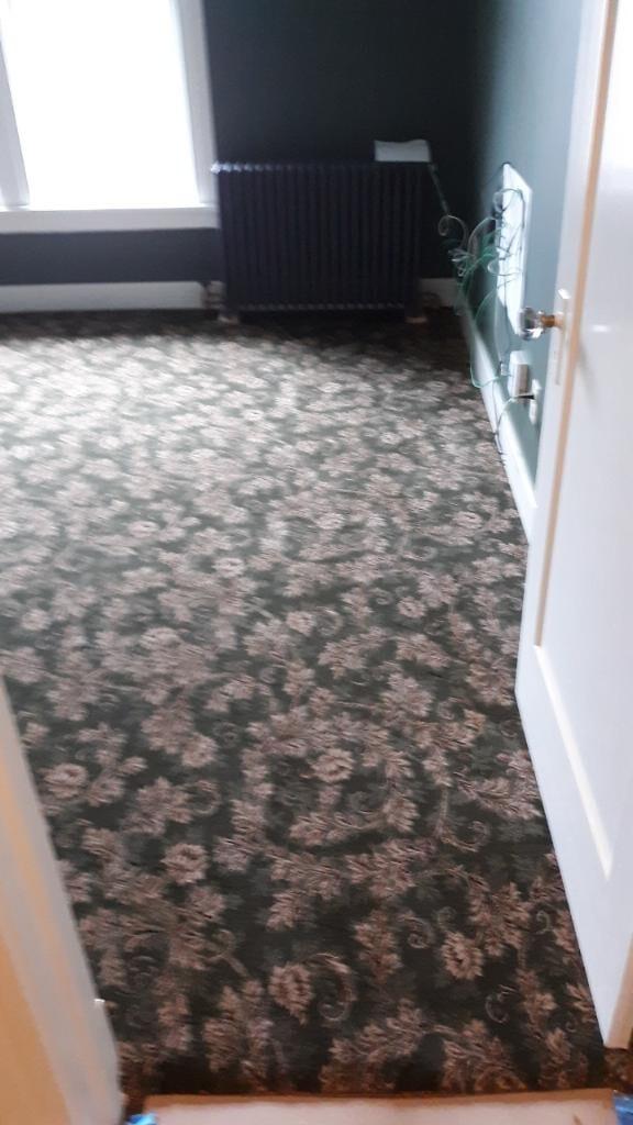Steve- Patterened Carpet 2