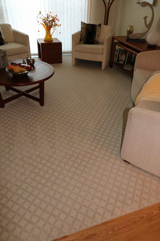 patterned carpet- kretch salem green