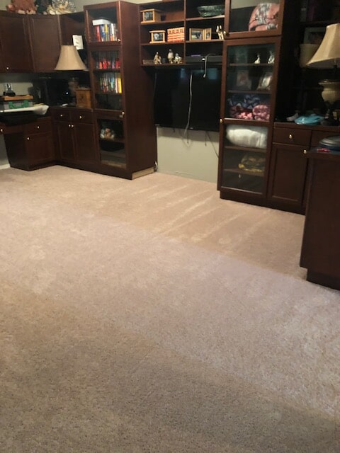 Carpet flooring from Emerald Installation in King County, WA