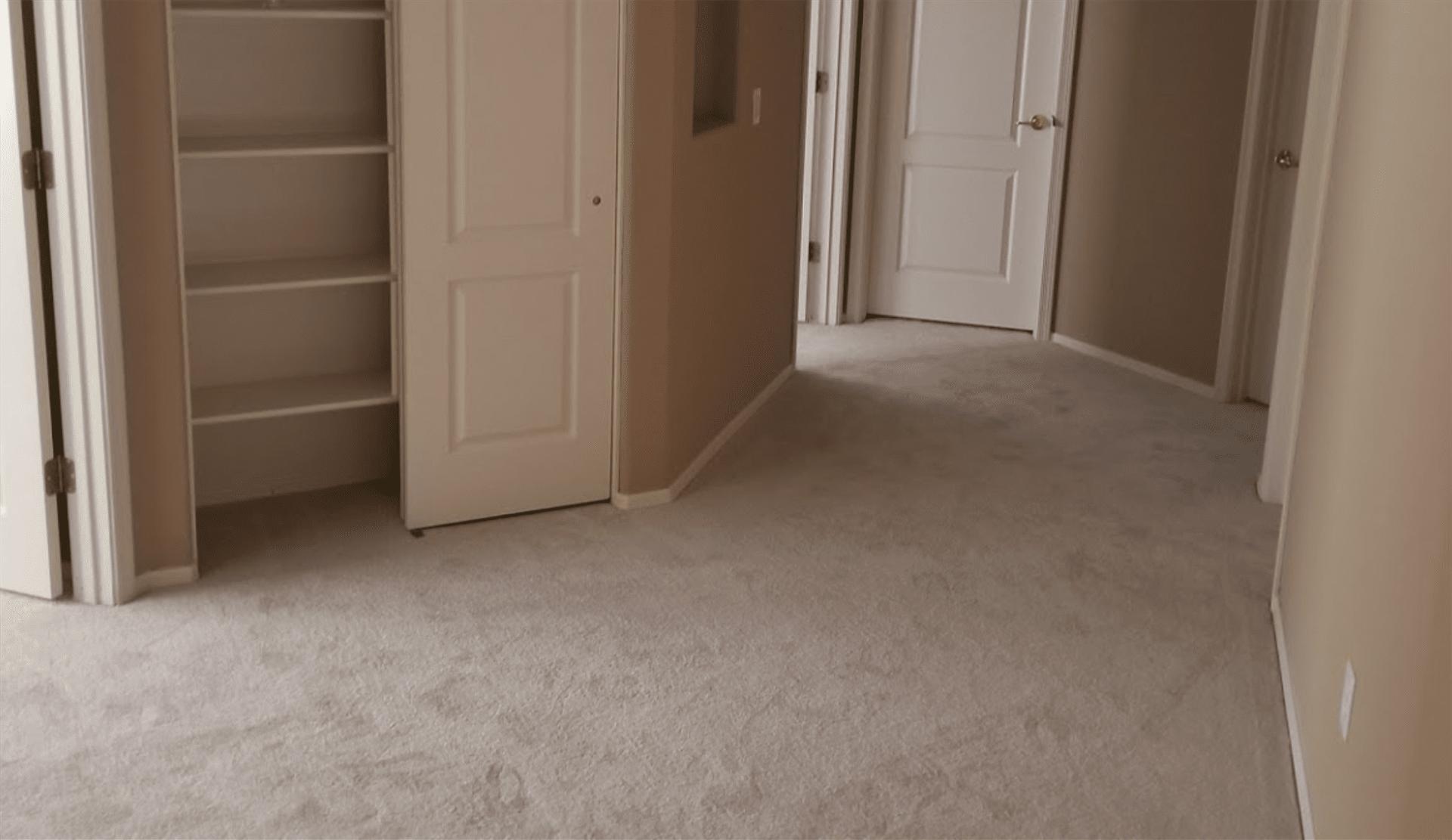 Carpet flooring from Taylors Flooring in Gilbert, AZ