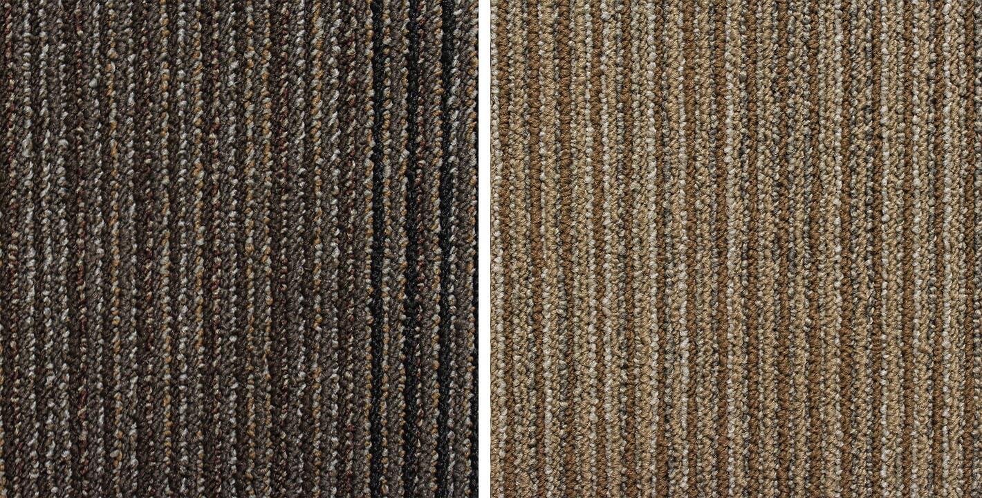 Genstock Record carpet from General Floor in Bensalem, PA