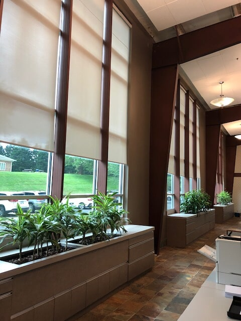 Controlled natural light in Luray, VA from Early's Flooring Specialists & More