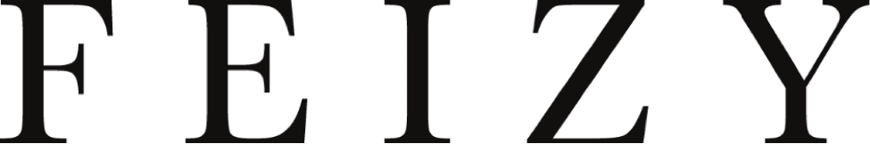 feizy-logo