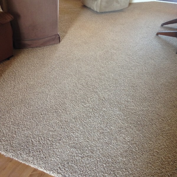 Soft new carpet in Queen Creek, AZ from Abel Carpet Tile & Wood