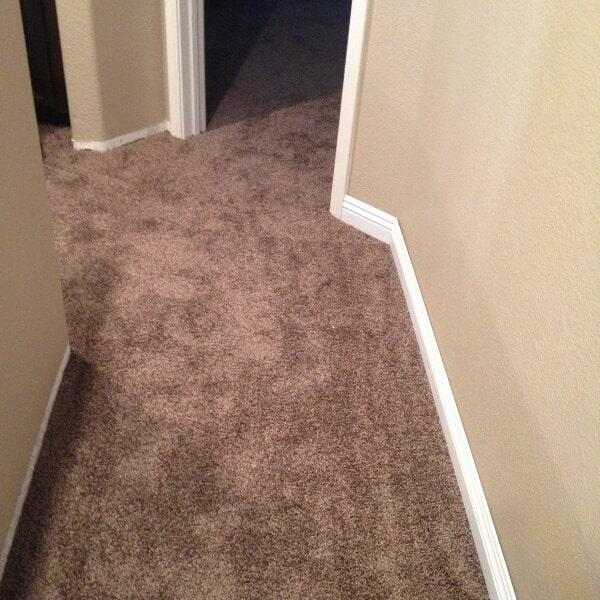Plush carpet in Gilbert, AZ from Abel Carpet Tile & Wood
