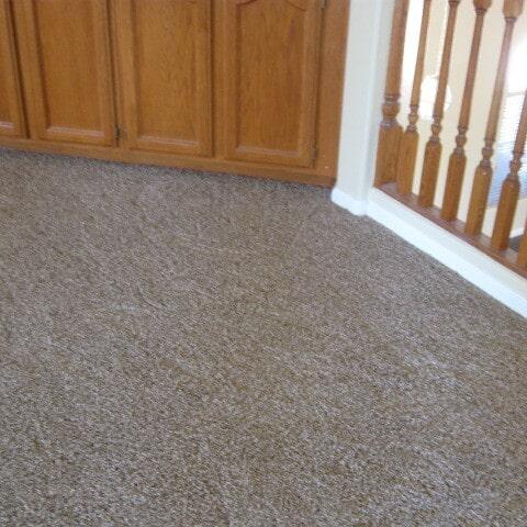 Classic color carpet in Chandler, AZ from Abel Carpet Tile & Wood