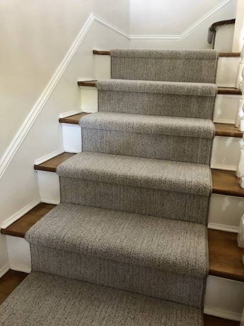Masland Nylon carpet Sea Grass in color Shell that we put in a house in Seattle near the central district. Definitely Pet-Friendly Flooring!