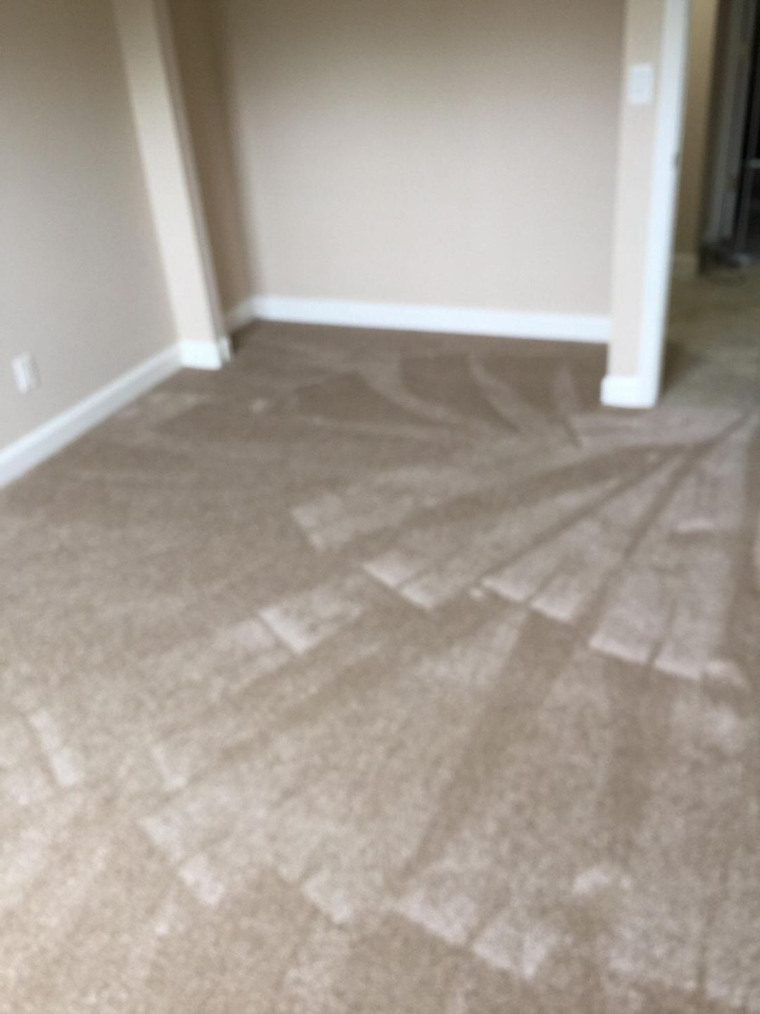 New carpet in Sarasota, FL from Paradise Floors and More