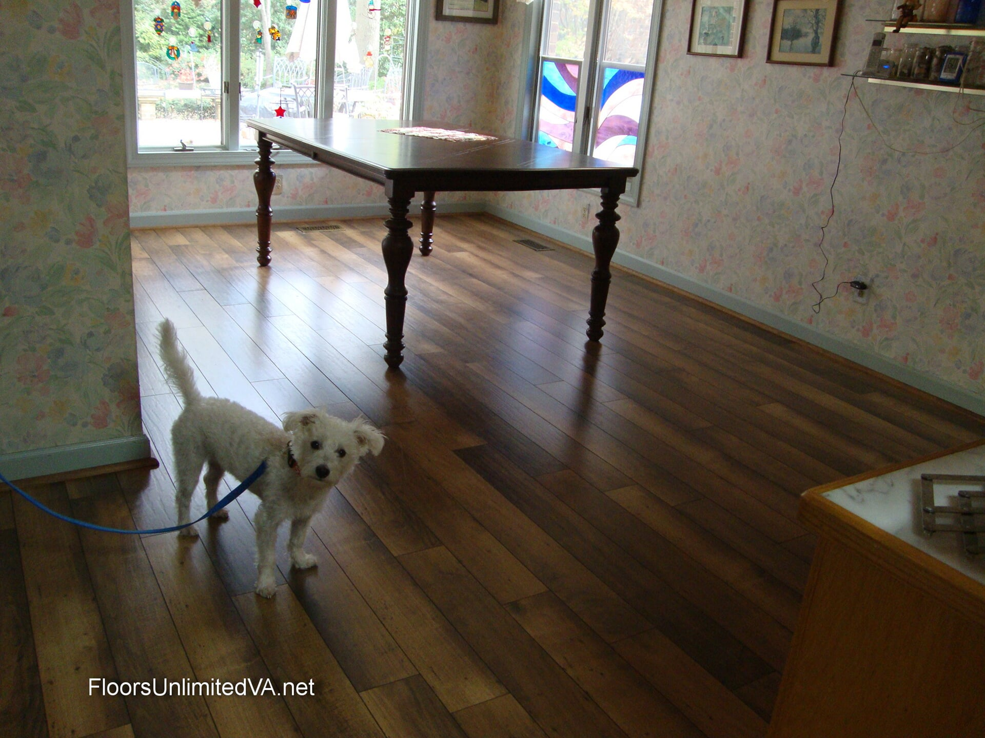 Pet-friendly flooring installation in Norfolk, VA from Floors Unlimited