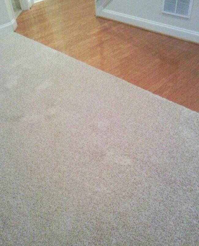 Carpet flooring in Oak Grove, GA from Gotcha Covered Floor Covering