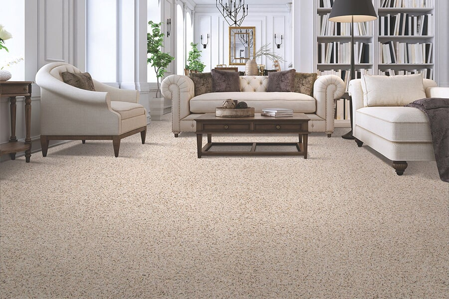 Carpeting in City, State from Paramount Rug Company