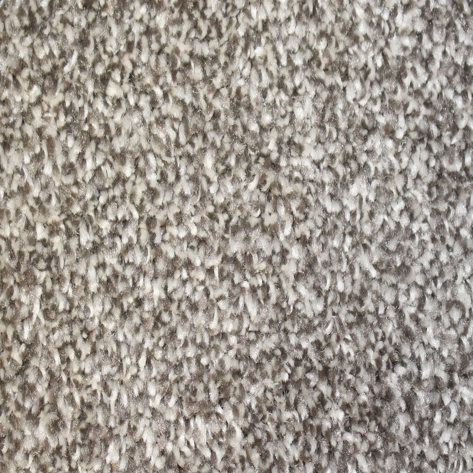 Genstock Pledge carpet in Enchant from General Floor