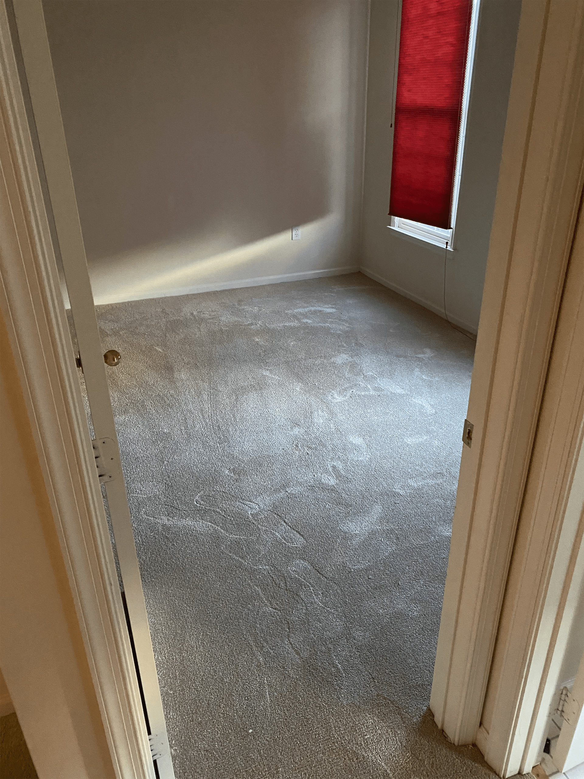 Carpet flooring in Silver Spring, MD from Carpet & Floor Express
